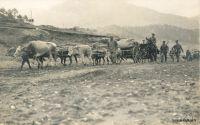artillerie-chariots-1